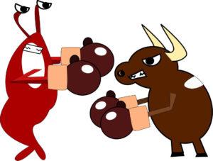 lobster fight bull